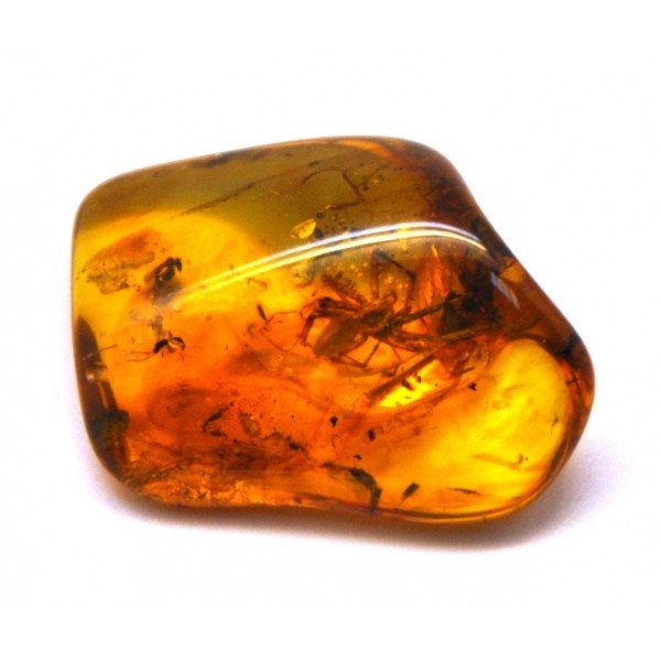 Amber Gemstone Properties The Stone Of The Sun