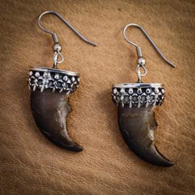 Angela Blessing Jewelry- genuine bear claw earrings